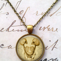 Skull Necklace, Skeleton, Conjoined Twins, Gothic, Steampunk, Science T105