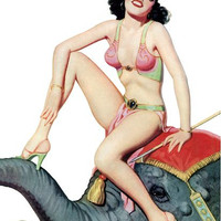 Pin Up Art Brunette In Harem Outfit Riding Poster