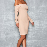 'Amatory' Nude One Shoulder Dress - Mistress Rocks
