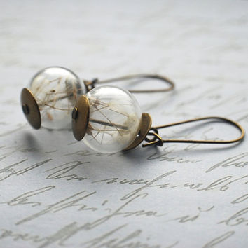 Dandelion Earrings Real Dandelion Seeds by NaturalPrettyThings