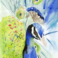 Original watercolor painting - Peacock