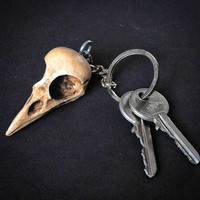 KEYCHAIN - ODDITY Gift Idea  - RAVEN  Skull replica Keychain with hand made certificate