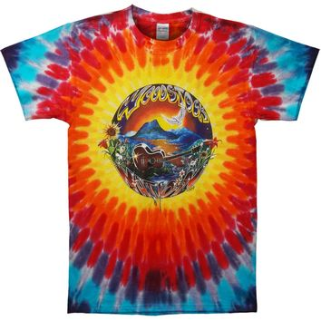 Woodstock Men's  Woodstock Days Tie Dye T-shirt Blue