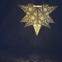 NEW Flower Star Luminary Lantern - special occasion, party, lamp, lighting, wedding, prom, reception, decoration