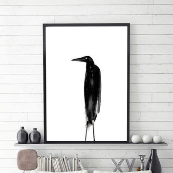 Bird art print,bird wall art,black white print,wall art printable, abstract print,modern wall art,contemporary print,printable poster art
