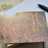 Floral  Photo Card - 4x6 blank Postcard - Zen Poctcard - Postcrossing Card - Sun Postcard