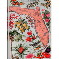 State Map of Florida (Natural Resources) - Vintage Poster (Unframed Canvas)