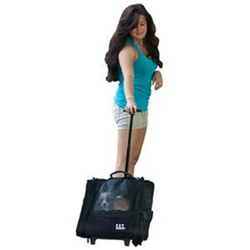 I-GO2 Traveler Pet Carrier, Backpack Expandable