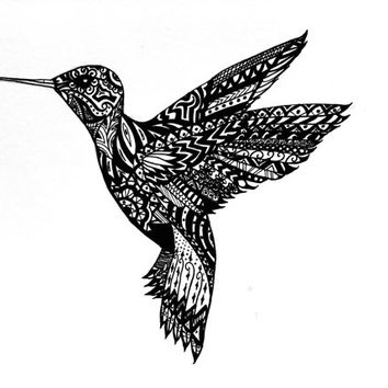 "Hummingbird Pen and Ink Print 5"" x 7"", Home Decor Artwork - Original Hand Drawn Art"