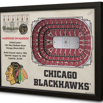 NHL Chicago Blackhawks Hockey 3D Stadium View Wall Art United Center
