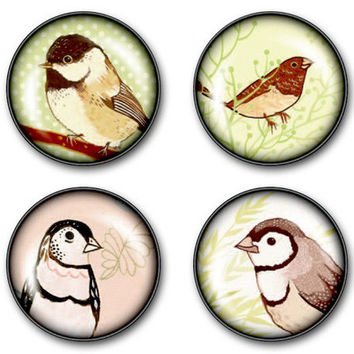 Song Bird Magnet Set