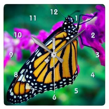 Orange monarch butterfly close-up photo wall clock