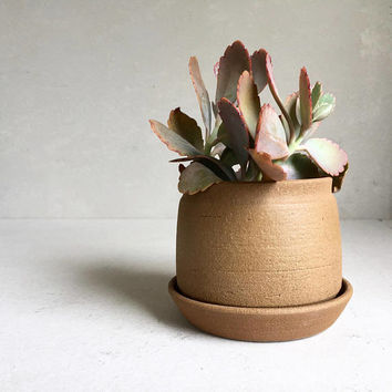 TAN PLANTER with Tray, ceramics, ceramic, pottery, handmade, ceramicplanter, handmadeplanter, succulent, plant pot, flower, earhty pot
