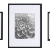 5 pc Wall Kit Black (2-8x8 matted to 5x5, 2-8x10 matted to 5x7 & 1-12x16 matted to 8x10 & 8x12)