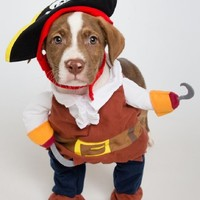 Pirate Dog Costume – Limited Edition