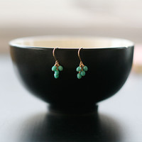 lucky in turquoise earrings