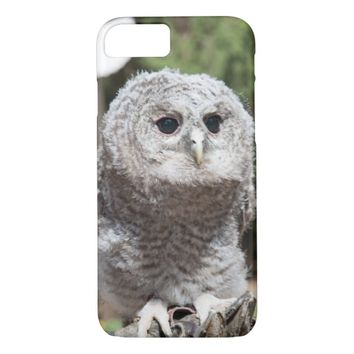 Cute Young Tawny Owl iPhone Case