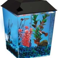 KollerCraft Aquarius Aquarium Kit, 1-Gallon