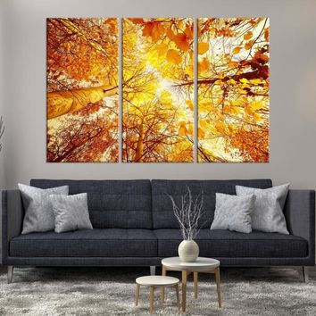 84422 - Large Wall Art Landscape Canvas Print - Yellow Tree View Taken from Ground Through the Top