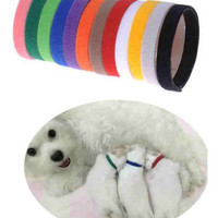 Puppy Kitten ID Velcro Collars Bands