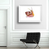 snail watercolor painting mollusca boy kid nursery decor print wall art fun men gift tropical brown artwork  5x7 8x10 11x14 16x20 24x36 art