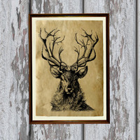 Magic Deer poster Wildlife art print Animal illustration Antique paper 8.3 x 11.7 inches
