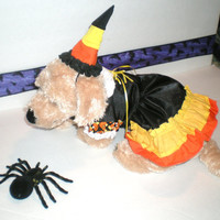 "DOG COSTUME, ""candy corn witch"", Dog Costume, Halloween For Pets,"