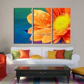 Wall Art Canvas Print Orange Daisy Flower - Yellow Flower Canvas Printing