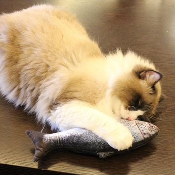 Cute Simulated 3D Stuffed Fish Plush Cat Chewing Kicking Catnip Toy