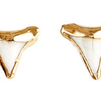 Shark Tooth Stud Earrings, Stud Earrings