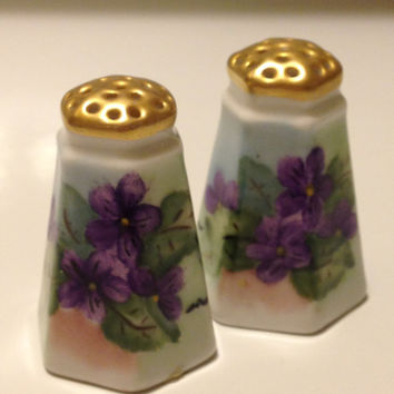 Vintage Bavaria Artist Signed Hand Painted Violets Salt and Pepper Miniature Collectible Porcelain Set  M. Stark