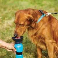 Portable Dog Drinking Dispenser