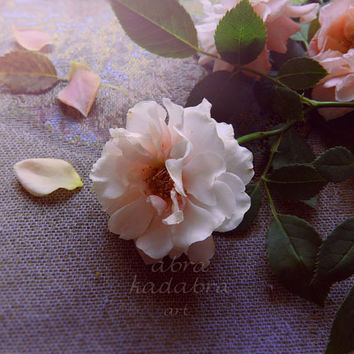 Wild Roses Instant Digital Download Art Photography Printable, vintage style photography, pink flower, shabby chic floral photo, still life