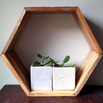 Apartment Sized Porcelain Indoor Pot for Mini Window Garden (Ready to Ship)