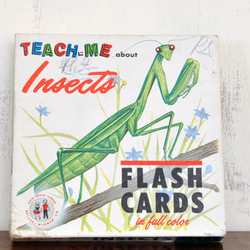 Vintage Insect Flash Cards, Gelles Widmer Company, Paper Ephemera, Collage, Mixed Media Art