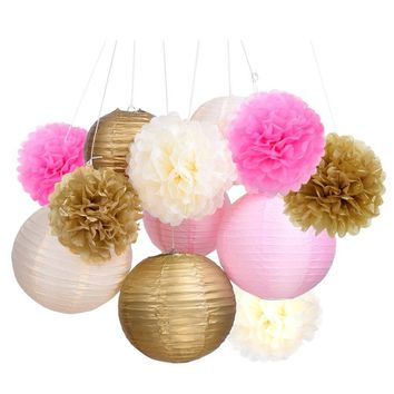 Tissue Paper Pom Pom Flowers and Paper Lanterns Party Decoration, 12 Pieces