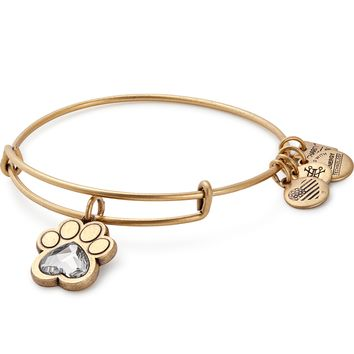Prints Of Love Charm Bangle | ASPCA
