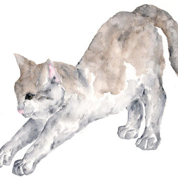 watercolor cat painting, cat art, cats, watercolor animals, cat print, grey, stretching cat, white - 10X8 print