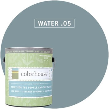 Paint by Colorhouse WATER .05