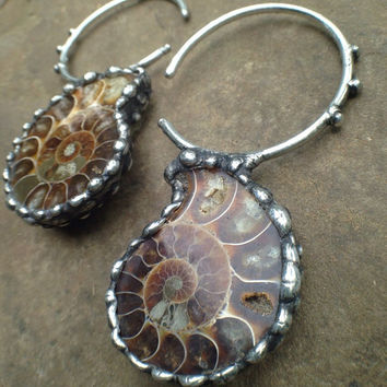 Ancestors- Ammonite Earweights- earrings- fossil jewelry- body modification piercing punk metal goth wicca boho stretched ears