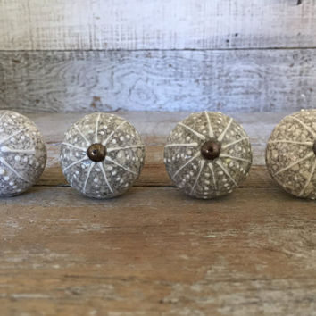 Drawer Knobs 3 Ceramic Drawer Pulls Sea Urchin Drawer Knobs Nautical Hardware Dresser Drawer Pulls Cabinet Door Knobs Ocean Themed Knobs