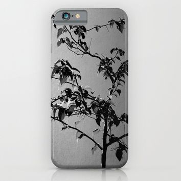 Light & Nature iPhone & iPod Case by Derek Delacroix