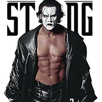 Sting & Vader & Wwe-WWE: The Best of Sting