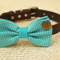 Blue Dog Bow Tie attached to collar, wedding accessory, Beach wedding