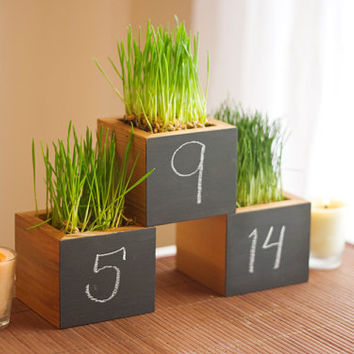 $43.00 Wedding Table Number Blackboard Wheatgrass by andrewsreclaimed
