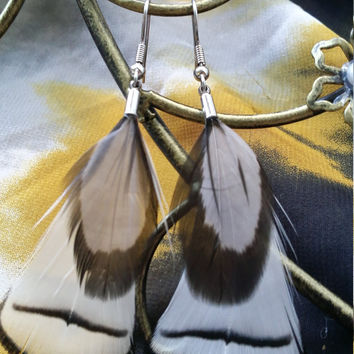 White Feather Earrings with Gray & Black Accent Feather
