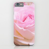 vintage pink rose iPhone & iPod Case by Yumehana Design Fine Art Photography