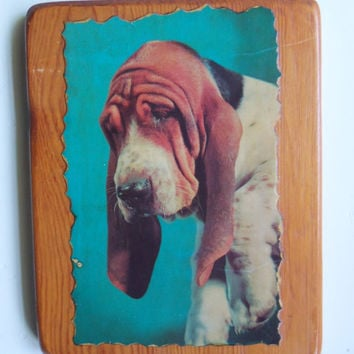 Vintage Hound Dog  Lacquered Wall Plaque 1974