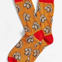 Squirrel Sock