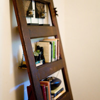 Vintage Door Repurposed  Bookshelf- WOODie (Shelf 012)
